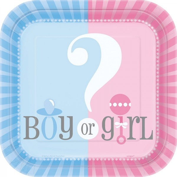 Pappteller Gender Reveal Girl or Boy klein